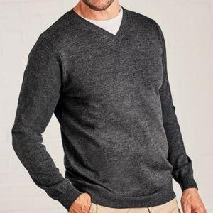 EXPRESS MEN Modern Fit Merino Wool V-Neck Sweater